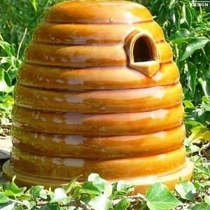 Wildlife Nests