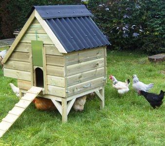 Marans Range Chicken Houses