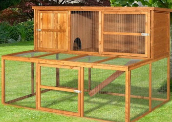 Rabbit and Guinea Pig Hutches