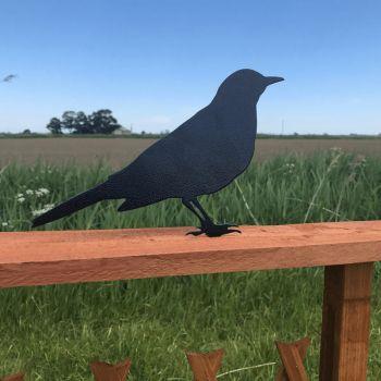 Blackbird Fence Topper