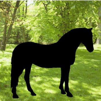 Horse Garden Art