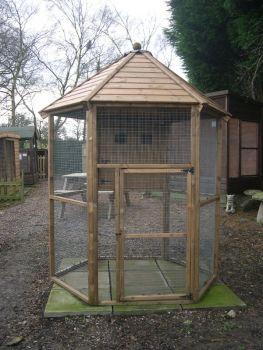Buttercup Hexagonal Outdoor Bird Aviary 8' diameter with nesting box