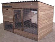 Cambridge Poultry house With Integral Run - Chicken coop for up to 10 hens