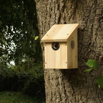 Colour and Infrared Camera Nest Box