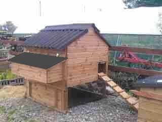 Windsor Standard Poultry House - Chicken house for up to 12 hens