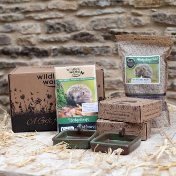 For the Love of Hedgehogs Gift Bundle