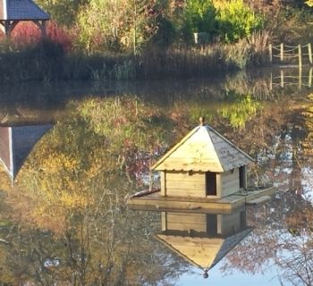 Large Square Indian Runner Floating Duck House, Waterfowl Nesting Box for Pond or Lake