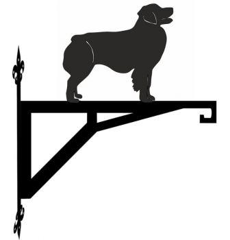 Australian Shepherd Dog Modern Contemporary Hanging Bracket