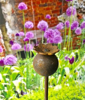 Pack of 3 Poppy Plant Pinn 4Ft (Bare Metal/Natural Rust)