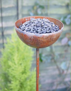 Pack of 3 Bowl Plant Pinn 4Ft (Bare Metal/Natural Rust)