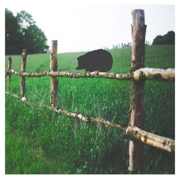 Hedge Hog Fence Topper - Large