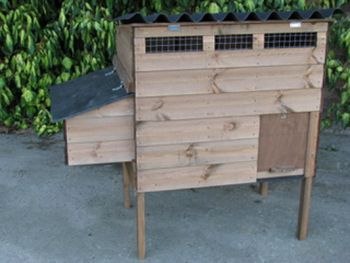 Stafford Junior Poultry House - Raised chicken coop for up to 4 hens