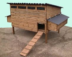 Stafford Major Poultry House - Raised Chicken coop for up to 20 hens