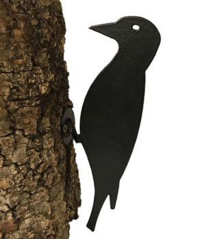 Woodpecker On Base