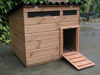 Swinford Duck House - Poultry coop for waterfowl