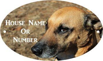 Dog Head Full Colour Printed Metal UV House Plaque - Regular