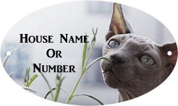 Sphynx Cat Full Colour Printed UV Metal House Plaque - Regular