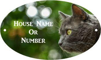 British Blue Cat Full Colour Printed UV Metal House Plaque - Regular