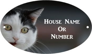 Black and White Cat Full Colour UV Printed Metal House Plaque - Large