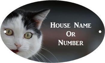 Black and White Cat Full Colour UV Printed Metal House Plaque - Regular