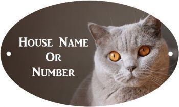 British Blue Cat Full Colour UV Printed Metal House Plaque - Regular