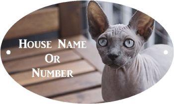 Sphynx Cat Full Colour UV Printed Metal House Plaque - Regular