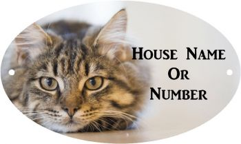Tabby Cat Full Colour UV Printed Metal House Plaque - Large