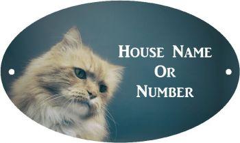 Fluffy Cat Full Colour UV Printed Metal House Plaque - Regular
