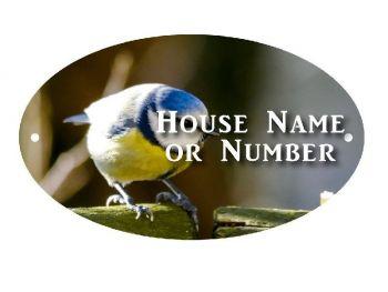 British Birds Blue Tit UV Full Colour Printed Metal House Plaque - Large