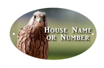 British Birds Kestrel Full Colour UV Printed Metal House Plaque - Large