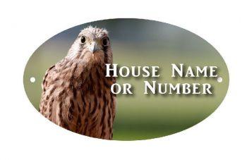 British Birds Kestrel Full Colour UV Printed Metal House Plaque - Regular