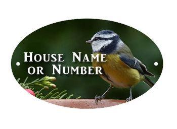 British Birds Blue Tit Full UV Colour Printed Metal House Plaque - Large