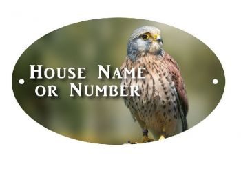 British Bird of Prey Full Colour UV Printed Metal House Plaque - Regular