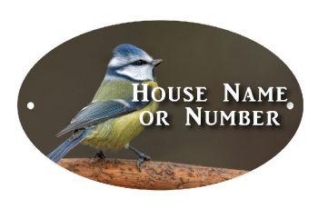 British Birds Blue Tit Full Colour Printed Metal House UV Plaque - Large