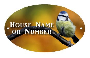 British Birds Blue Tit Full Colour Printed Metal UV House Plaque - Large