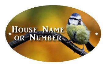 British Birds Blue Tit Full Colour Printed Metal UV House Plaque - Regular