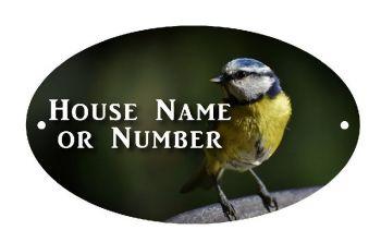 British Birds Blue Tit Full Colour UV Printed Metal House Plaque - Large