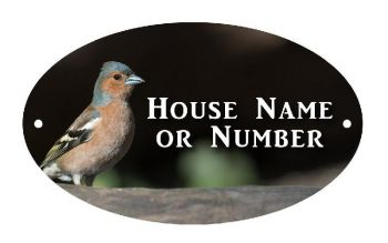 British Birds Chaffinch Full Colour Printed UV Metal House Plaque - Large
