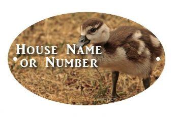 British Birds Duckling Full Colour UV Printed Metal House Plaque - Large
