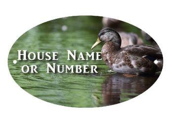 British Birds Duck Full Colour UV Printed Metal House Plaque - Large