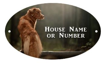 Dog In The Woods Full Colour UV Printed Metal House Plaque - Regular