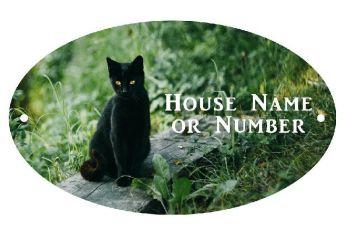 Black Cat on Plank UV Printed Metal House Plaque - Large