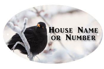 Winter Blackbird UV Printed Metal House Plaque - Large