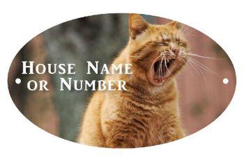 Yawning Cat UV Printed Metal House Plaque - Large