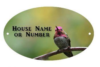 Humming Bird UV Printed Metal House Plaque - Large