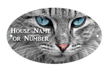 Cat with Blue Eyes UV Printed Metal House Plaque - Large