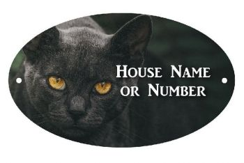 Black Cat with Yellow Eyes UV Printed Metal House Plaque - Large