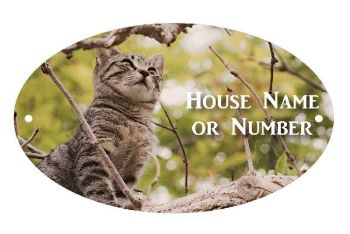 Cat In Tree UV Printed Metal House Plaque - Large