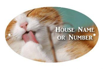 Cat Licking UV Printed Metal House Plaque - Regular