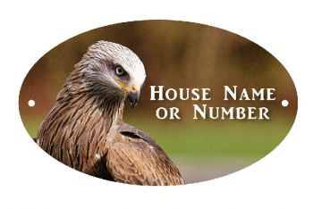 Eagle Bird of Prey UV Printed Metal House Plaque - Large